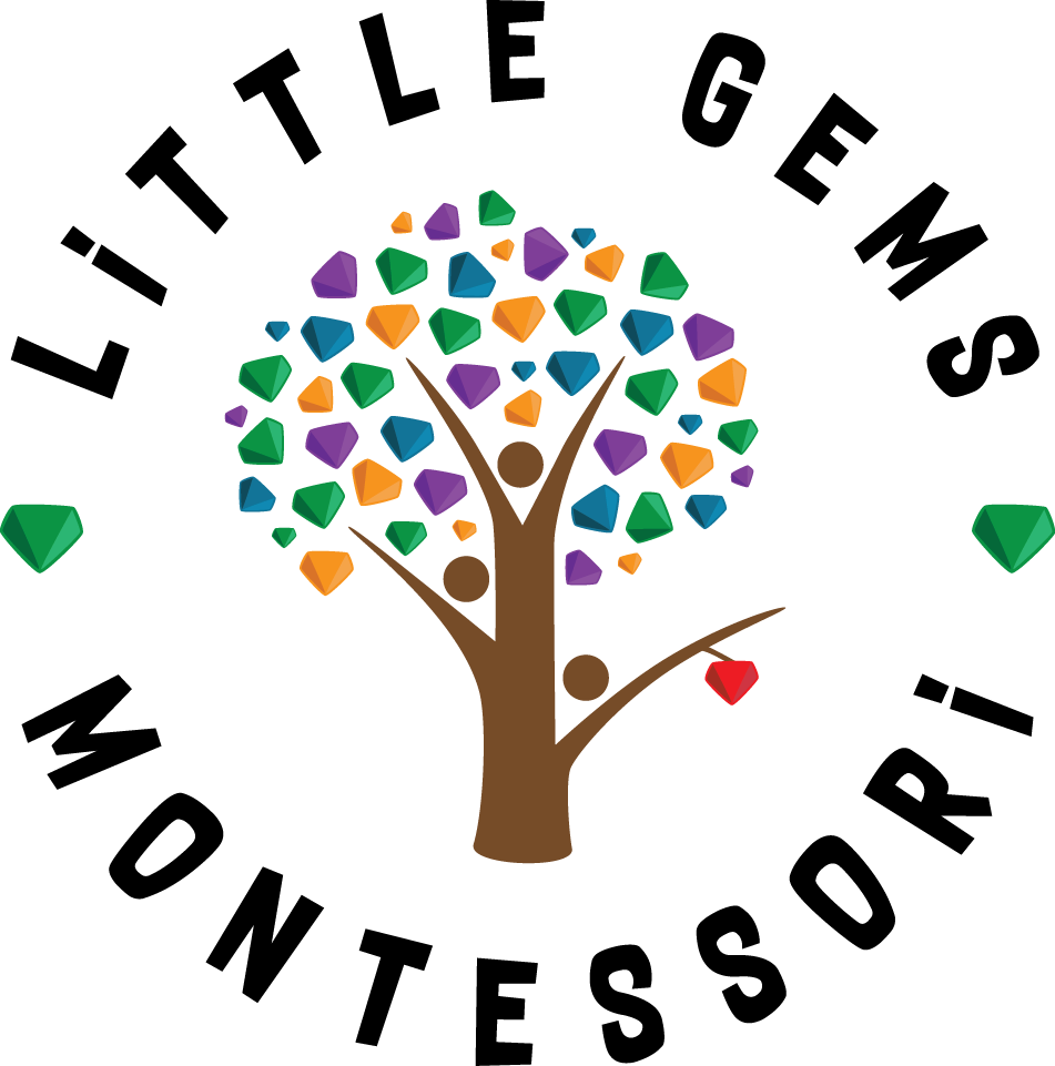 Little Gems Montessori McKinney